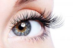 Beauty Eyelash Conditioner