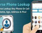Cellphone Lookup and Dave's Plumbing Service Revived
