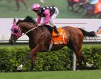 Beauty Generation extends prevailing series on Sha Tin go back
