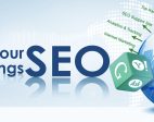 SEO Services You Must Insist on From The Company