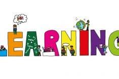 Helpful Tips For SEO Learners