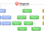 How does checkout process influence profits of your Magento store?