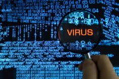 11 Ways Computer Viruses Are Spread